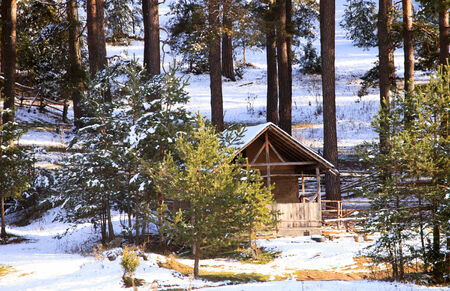 winter sunny forest with woden shelter covered with snow  photo