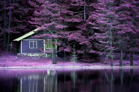 purple infrared landscape on calm lake for background or poster