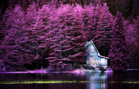 purple infrared landscape with alone villa on calm lake for background or poster Stockfoto