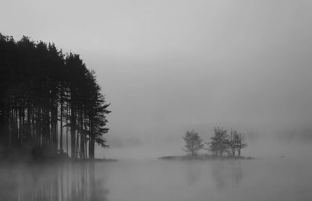 black and white  abstract misty lake in autumn sunrise photo