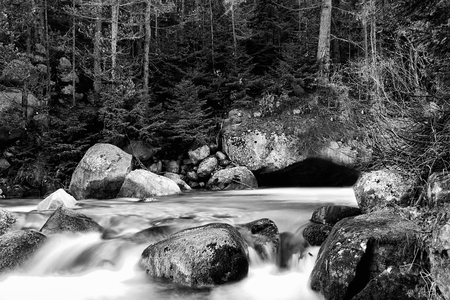 stunning abstract black and white nature landscape in forest with cold river  photo