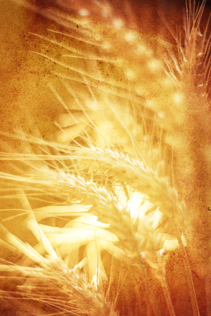 abstract vertical golden autumn textured background with seeds