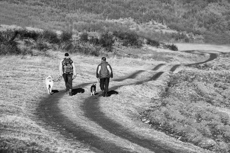 lifestile: two man and dog walk on dirt road in sunset time, black and white landscape