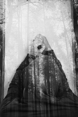 tranquilly: abstract double exposure man silhouette and wooden forest Stock Photo