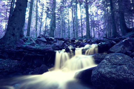 nature landscape: infrared nature landscape with small forest river Stock Photo