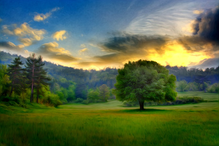 sunset over the fields and trees near forest, modern oil painting wallpaper