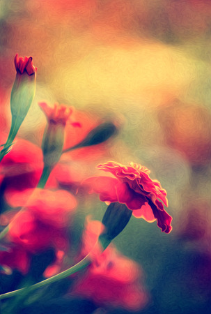 colore: abstract oil painting of red flowers, modern colore and style Stock Photo