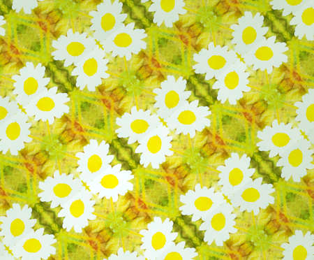 flower age: abstract grunge floral pattern with white and yellow dominant colors