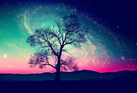 많은 별 밤 하늘에 혼자 나무와 빨간 외계인 풍경 -이 이미지의 요소는 항공 우주국 (NASA)에 의해 제공됩니다