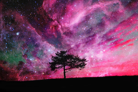 fantasy world: red alien landscape with alone tree silhouette over the night sky with many stars - elements of this image are furnished by NASA