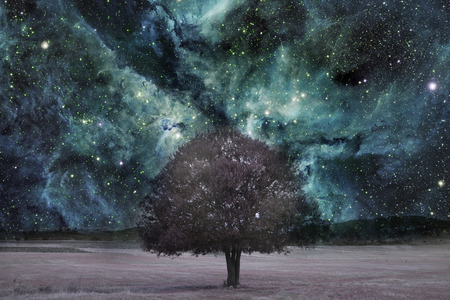 infrared alien landscape with alone tree silhouette over the night sky with many stars - elements of this image are furnished by NASA