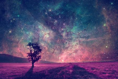 luz de luna: paisaje extranjero rojo con la silueta del árbol solo en elementos de campo de color púrpura de esta imagen proporcionada por la NASA están Foto de archivo