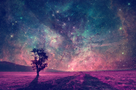 red alien landscape with alone tree silhouette in purple field- elements of this image are furnished by NASA Stok Fotoğraf