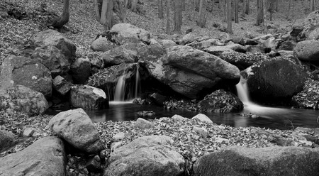 wild silky white: black and white forest stream landscape, autumn time
