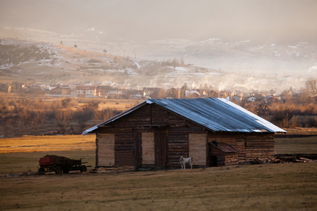 farm building: farm building with guardian dog and small village in the winter time
