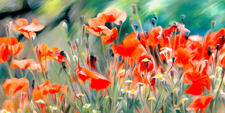 flower fields: watercolor paint of spring field full with red poppies and wild flowers