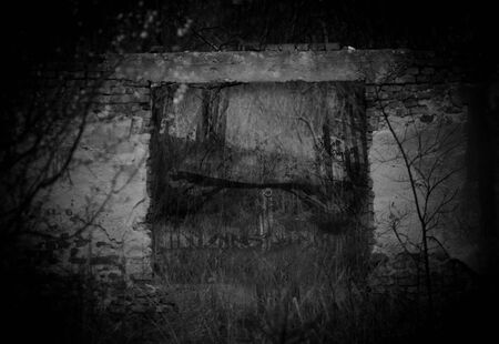 ghostly: ghostly shadow over the abandoned building in deep forest, black and white high contrasted scary background