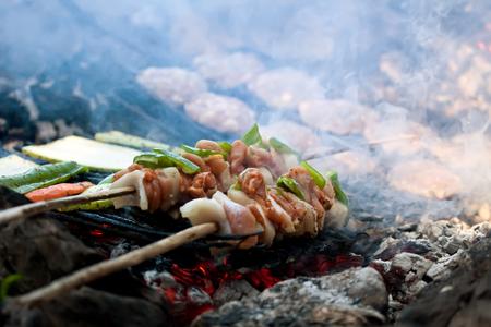 tasteful: tasteful meet and vagetable shashlik over open camp fire