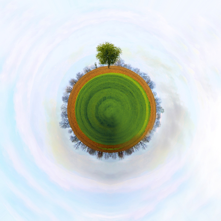 the concept of a small planet with small tree on it, clear blue sky Stock Photo