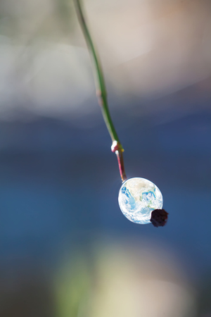 world in small drop on leaf- elements of this image are furnished by NASA Stock Photo