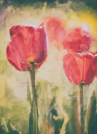 art watercolor tulip spring painting, red, green and yellow dominant colors, oil digital paintings Stock Photo