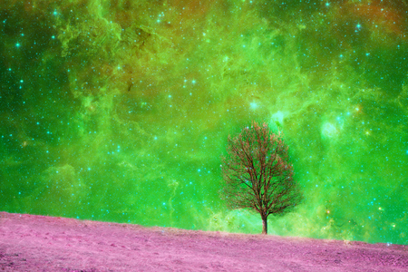 Fantasy landscape - Lonely bare tree silhouette with huge planet rising behind it and galaxy in the sky. Stock Photo