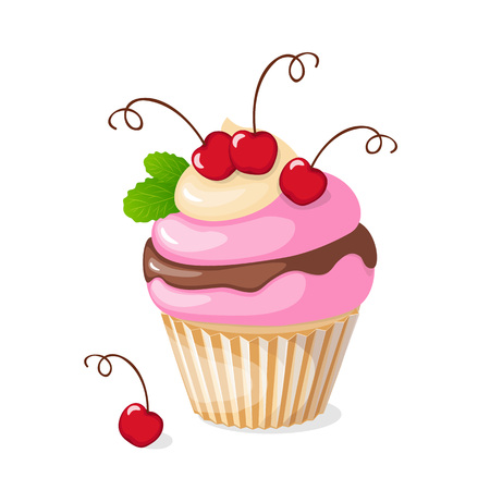 Vector illustration isolated colorful cupcake with cherry on the white background.