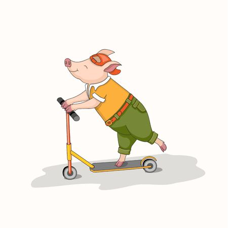 Isolated cartoon piggy, symbol year 2019 according to Chinese astrology and oriental calendar riding a scooter.