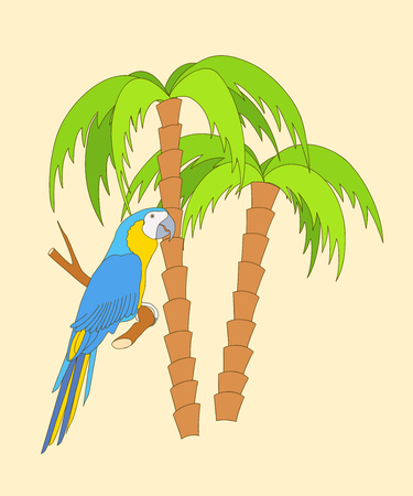 Hand drawn cartoon parrot on the twig and two palm trees. Vector illustration for home art, travel web banners, flyers, decorate wall, kid rooms, book, notebook, tutorials, posters, cards. eps 10. Çizim