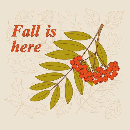 Rowanberry twigs, contour drawing autumn leaves and slogan Fall is here.
