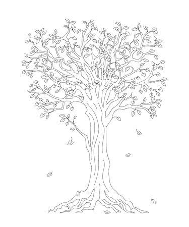 Outline illustration tree with roots and fall down leaves for kid and adult coloring book, tutorials. 일러스트