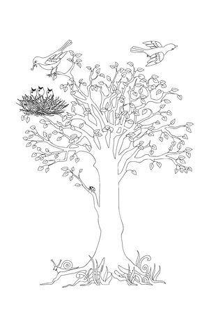 Outline illustration tree with leaves, birds and nest for kid and adult coloring book, tutorials. 일러스트