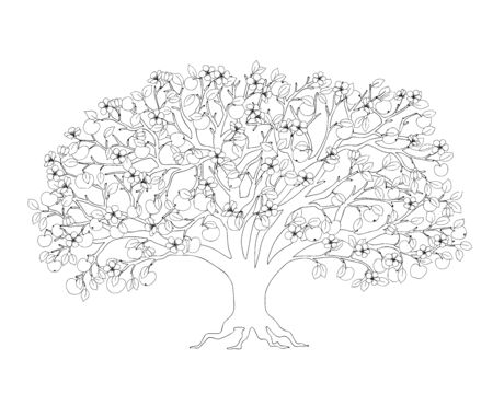 Outline illustration apple tree with leaves, apples and blossom for adult or kid coloring book, tutorial, home art print, decorating,  Earth Day flyer design. Isolated on white background. 일러스트