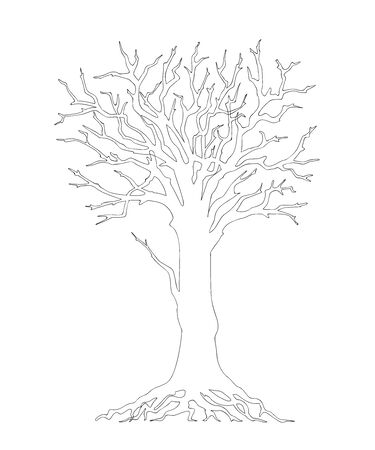 Outline illustration tree with roots and without leaves for kid and adult coloring book, tutorials. Print for home art, decorate wall  and flyer design.