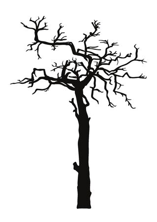 Black silhouette illustration crooked tree without leaves. Icon tree isolated on white background. Template for tattoo, print for t-shirt, home art, decorate wall, logo and flyer design.