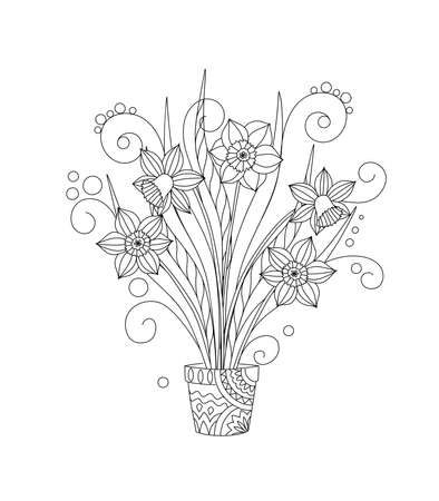 Monochrome hand drawn isolated narcissuses in the pot. Black and white illustrations for anti-stress therapy, adult coloring book, greeting and invitation card. eps 10