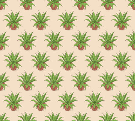 Beige seamless pattern with hand drawn agave in the pot for wallpaper, packing gift, present, pack paper, textile print, fabric pattern. 일러스트