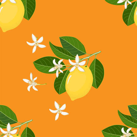 Orange seamless pattern with yellow lemon and blossom for wallpaper, packing gift, present, tea pack paper, textile print, fabric pattern.