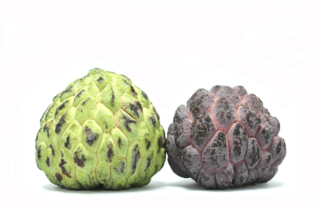 thiamine: Green and purple custard apple with white background.
