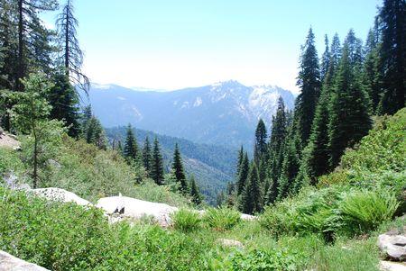 high sierra: Mountain view from High Sierra Trail