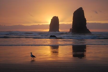 zonsondergang achter de kust rotsformaties