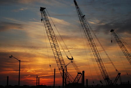 Cranes silhouetted on sunset sky
