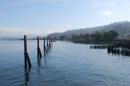 pilings: Looking up the Columbia River Stock Photo