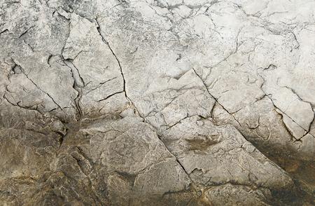 texture of stone on the seashore