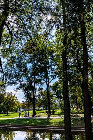 Der Spaziergang im Park Lizenzfreie Bilder