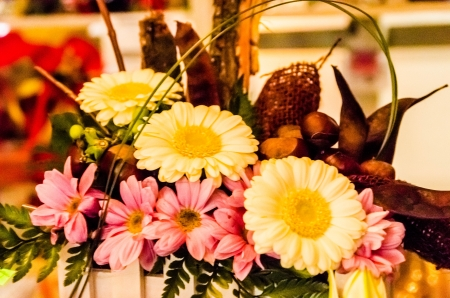 Variation of flowers , arranged all together Stock Photo - 24369492
