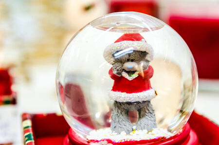Teddy bear wearing christnmas clothes in crystal ball  photo