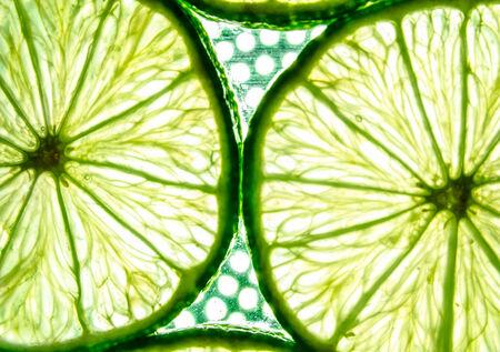 Slices of lemon close-up