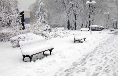 winter park benches and footsteps in snow photo