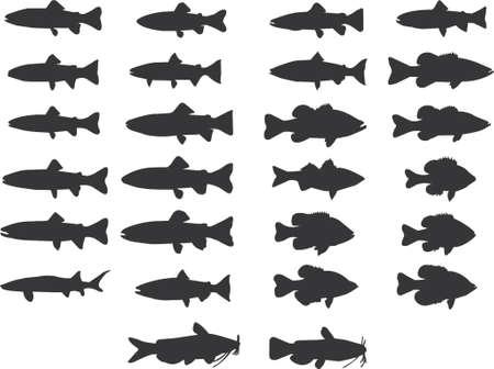 fish silhouettes vector Illustration